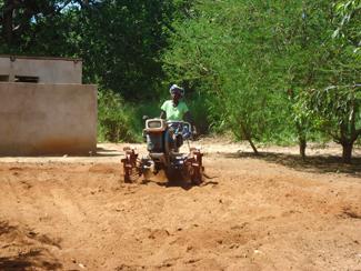 Productivitat, diversificació i comercialització en el mercat local, claus per als petits agricultors-img1