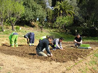 Únete al proyecto de agricultura urbana de Humana-img1