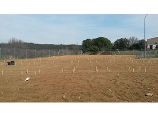 En marcha el proyecto 3C de San Agustín de Guadalix-img1