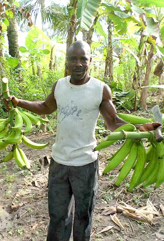 Angola: per un millor aprofitament dels recursos-img2