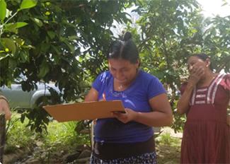 La construcción de silos y su impacto en las comunidades de Belice-img3
