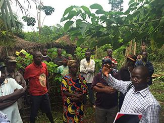 Farmers Club Congo: la duración de los proyectos, una de las claves-img1