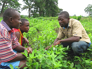 Committed to agricultural development-img1