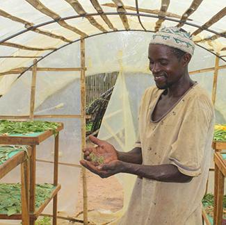 Compromesos amb el desenvolupament agrícola-img2
