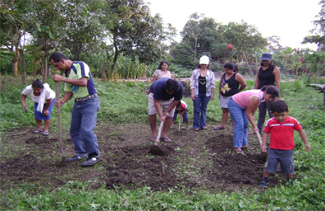 Finalize food security projects financed by the municipalities and Sax Villacañas-img1