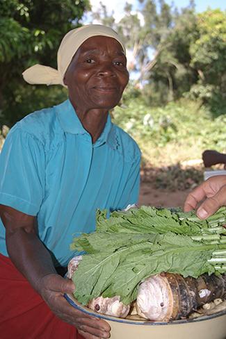 D'una Dècada Mundial dels Pobles per a l'Acció en Nutrició-img2