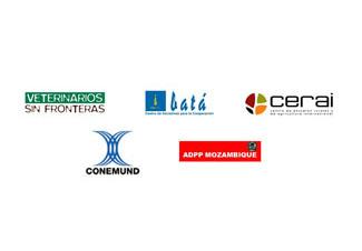 Veterinaris Sin Fronteras, CIC-Batá, CERAI, Conemund i ADPP Moçambic participaran en la Taula sobre Seguretat Alimentària-img1