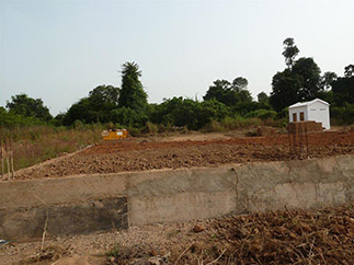 Cashew processing and food security in Guinea-Bissau-img1
