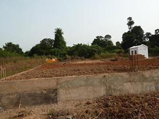 Procesamiento de anacardos y seguridad alimentaria en Guinea-Bissau-img1