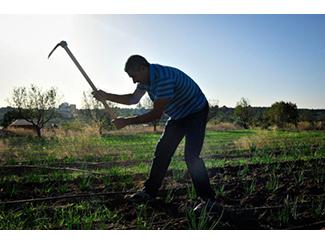 Humana consolida su programa de agricultura social-img2