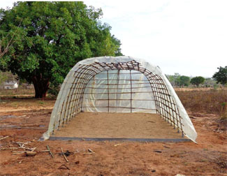 300 small farmers in Cabo Delgado incorporate solar tunnel dryers of food-img1