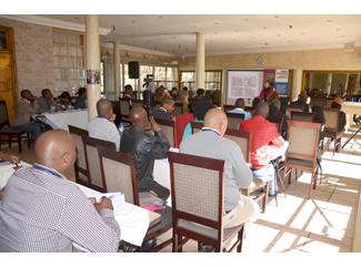 Festival y Seminario Youth in Action: objetivo cumplido-img2