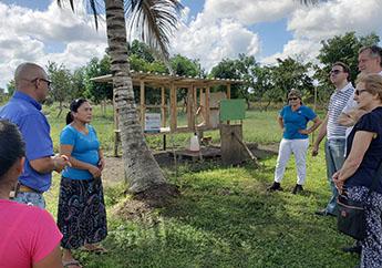 Belice: Mejora de las condiciones de vida en Toledo y Stann Creek-img2
