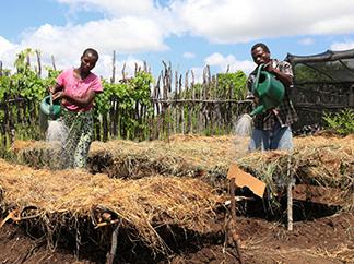 Seguir treballant al costat de les comunitats de Sud, extremant la prevenció-img1