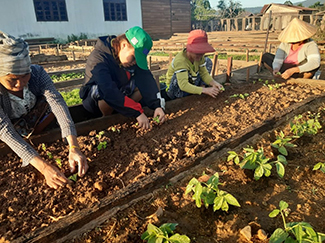 Laos y el desarrollo de la agricultura climáticamente inteligente-img2