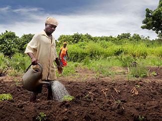 Continua la batalla enfront de la crisi climàtica i l'accés a aigua.-img1